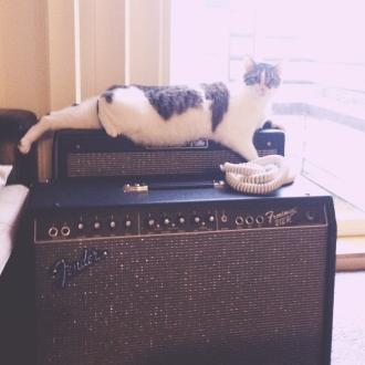 Nico enjoying the novelty of amplifiers.